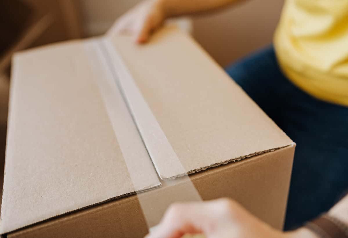 turkey-izmir-maskot-shipping-logistics-land-transport-parcel-min